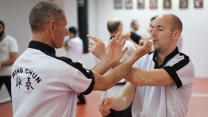 wing chun kung fu training
