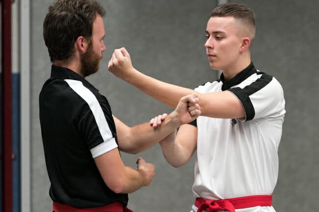 Wing Chun Pak Da